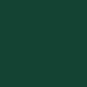 Зеленый мох, близкий к RAL 6005