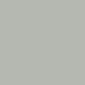 Серый, близкий к RAL 7038