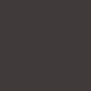 Темно-коричневый, близкий к RAL 8019
